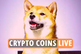 Latest Bitcoin News – The Shiba Inu cryptocurrency now competes with  Dogecoin as its price skyrockets and Ethereum exceeds $ 4,000