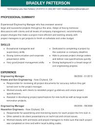 Resume PDF Format Download professional