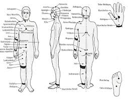 Marma Chart Marma Therapy Healing Touch Marma Body Massage Restores