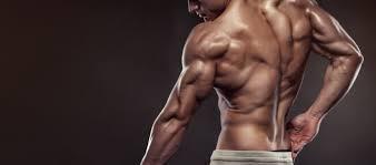「ビルドアップ 筋肉」の画像検索結果
