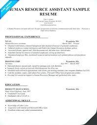 Hr Assistant Sample Resume Best of Sample Hr Generalist Resume Zippappco