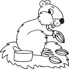 Small Picture Animal Coloring Pages 54 799772 Free Printable Coloring Pages