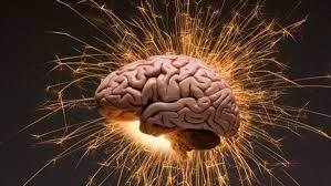 Risultati immagini per la biochimica del cervello