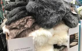 sheepskin rug costco stunning inspirational special values rugs interior design 18