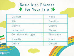 The international phonetic alphabet (ipa) is a system of phonetic notation devised by linguists to accurately and uniquely represent each of the wide variety of sounds ( phones or phonemes ) used in spoken human language. Common Irish Phrases And Words You Might Need