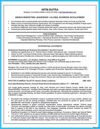 Area Of Expertise Examples For Resume Web Developer Resume Example Emphasis 100 Expanded Areas Of 6