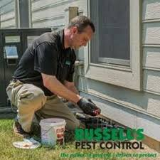 russells pest control knoxville tn.  Pest Photo Of Russellu0027s Pest Control  Knoxville TN United States  With Russells Knoxville Tn