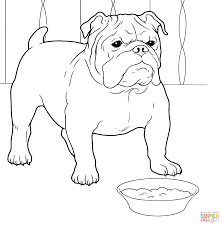 French Bulldog Coloring Page From Dogs