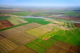 Здійснення представницьких повноважень щодо захисту інтересів держави в сфері земельних відносин