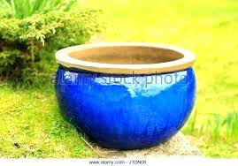 large ceramic garden pots big blue glazed outdoor pot stock plant gardening gard