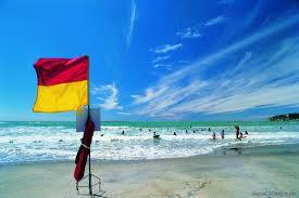 swimming between the flags summer new zealand summer months