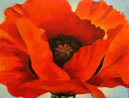 red poppy 1927 by georgia okeeffe