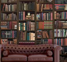 library wall mural bookcase self adhesive murals books library wall mural
