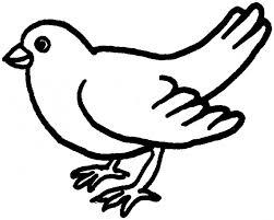 Uccellino Disegno Facile Migliori Pagine Da Colorare
