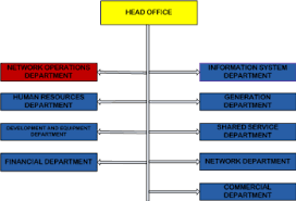 Information System Department Organizational Chart Memoire Online Requirement Study For The Business