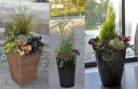255 Best Images About Gardening On Pinterest  Gardens Container Container Garden Ideas For Winter