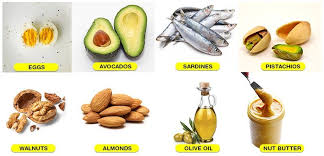 importance of fats types of fats