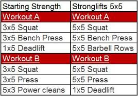 Image result for starting strength pdf