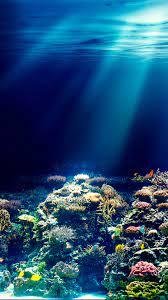 Underwater Ocean Wallpapers (52+ best ...