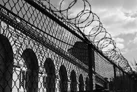 images of black and white barbed wire prison fence wire diagram andykazie photo keywords barbed wire