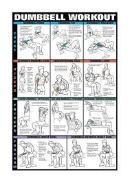 Dumbbell Exercises For Men Chart Dumbbells For Arms Workout Posters Dumbbell Workout Gym