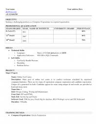 Name Your Resume Badak Examples Monster Brief Title Of The Cv