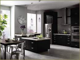 Martha Stewart Kitchen Designs Martha Stewart Cabinets Best Home Depot Cabinet Hardware Martha