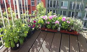 Small Picture balcony garden design Archives Home Center News