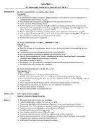 Human Resources Resume Payroll Sample Resource Manager Samples