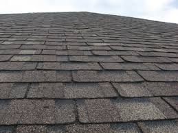 architectural shingles. Pic Architectural Shingles Badly Shot After 10 Years -- Manufacturing Defect? Warranty?-pic