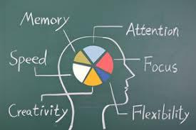 Types And Levels Of Brain Injury Brain Injury Alliance Of Utah