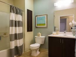 apartment bathroom ideas pinterest. Large Images Of Ideas For Decorating An Apartment Bathroom Theme Pinterest E