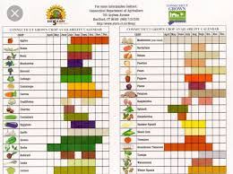 Seasonal Good Chart Vegetable Seasoning Vegetable Chart