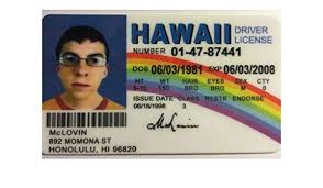 Movie Prop Amazon Online Low Drivers Buy India Lovin Hawaii License Novelty Prices - Mc In Superbad At in Reproduction