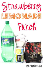 Easy Recipes To Make Pink Punch For Baby Shower  Baby Shower For Punch For Girl Baby Shower
