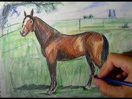 horse drawing in color. Delighful Drawing And Horse Drawing In Color YouTube