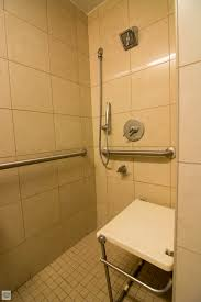 fantastic stainless steel handle bar also free standing head shower