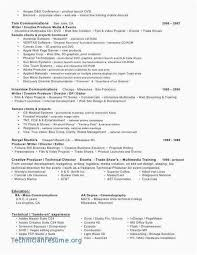 promotional resume sample job resume template download new 21 business promotional material