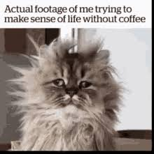 In the same way that monday can conjure up a feeling of dread. More Coffee Gifs Tenor