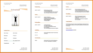 4 Professioneller Lebenslauf Vorlage Kostenlos Analysis