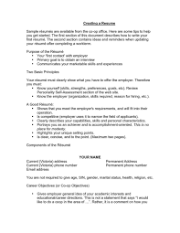 Curriculum Vitae Objectives On Resume Format First Job Principal