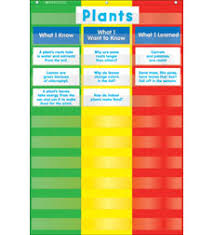 3 Column Chart Pocket Chart By