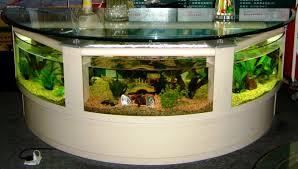 Cool Aquariums Best Aquarium Design Aquarium Design Pinterest Aquarium