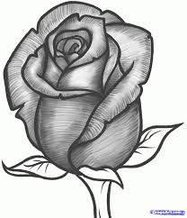 Small Picture Best 20 Drawing of a rose ideas on Pinterest How to draw roses