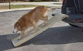 build a dog ramp