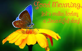 beautiful butterfly pictures with quotes. Perfect Pictures Good Morning Lets Make Today A Beautiful Day 1 To Butterfly Pictures With Quotes O