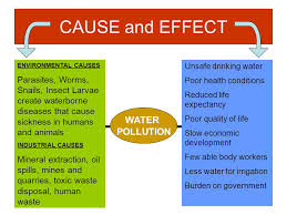 causes and effect of water pollution essay custom paper writing  causes and effect of water pollution essay