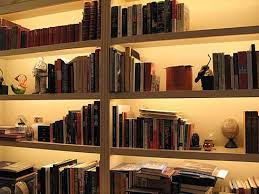 And Other Q.'s Lighted Bookshelves Perfect  Lighted Vertical Wall Shelf ...