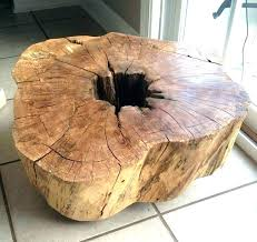 coffee table tree trunk how to make