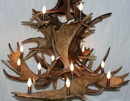 close up of large moose antler chandelier for chandelieroose antler chandelier
